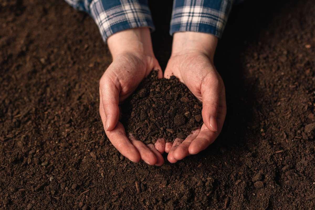 types of soil testing