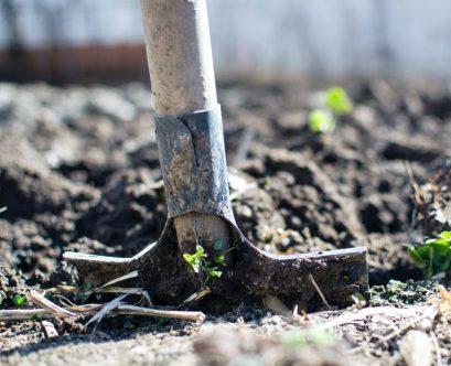 uses of soil testing